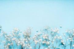 Den lilla vita gypsophilaen blommar på blå bakgrund, den nätta blom- gränsen, den bästa sikten, kopieringsutrymme Royaltyfri Fotografi