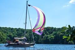 Den lilla yachten med ett färgrikt seglar framtill att kryssa omkring till och med en sjö på ett soligt summerday med en skog i b royaltyfri fotografi