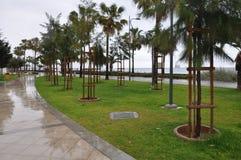 Den Limassol marina i Cypern Royaltyfri Bild