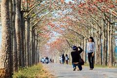 Den Lin monumentet i början av mars av varje år tilldrar öppen stort nummer avturistkapock Arkivbilder