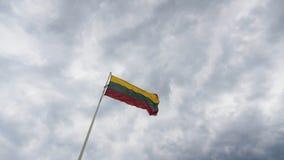 Den litauiska flaggan stock video