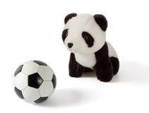 Den lite flott pandaen med fotboll klumpa ihop sig Arkivfoton