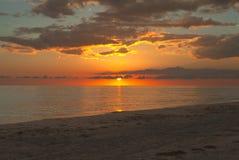 Den livliga solnedgången på gömma i handflatan ön Florida royaltyfri foto