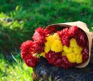 Den ljusa buketten av chrysanthemums är på stubben royaltyfri bild