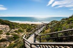 Den ljusa dagsikten in mot stranden över att se trä går vägen royaltyfri foto
