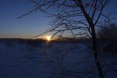 Den ljusa gryningen Arkivbilder
