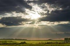 Den ljusa solen tänder ett lantligt landskap Arkivfoto