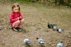 Den lockiga flickan matar stads- duvor duvor i parkera Arkivbilder