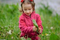 Den lockiga flickan undersöker försiktigt grässtrået som sitter på en vårröjning Barnet vet världen Barn Royaltyfri Fotografi