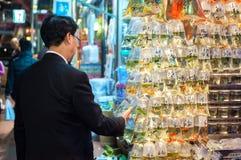 Den lokala mannen undersöker den tropiska fisken på marknaden för guldfisken för Hong Kong ` s Tung Choi Street, Mong Kok, Hong K arkivfoto