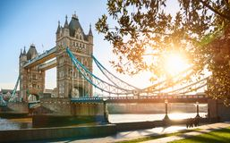 Den london tornbron på soluppgång Arkivfoton
