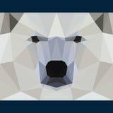 Den lösa björnen stirrar framåtriktat Natur och bakgrund för tema för djurliv Abstrakt geometrisk polygonal triangelillustration Royaltyfri Fotografi
