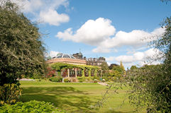 Natur av trädgården Royaltyfri Bild