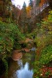Den lugna floden flödar i en härlig höstskog royaltyfri bild