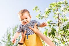 Den lyckliga älska familjen med behandla som ett barn sonen i blommande vårträdgård behandla som ett barn holdingmodern Spendera  Fotografering för Bildbyråer