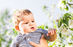Den lyckliga älska familjen med behandla som ett barn sonen i blommande vårträdgård behandla som ett barn holdingmodern Spendera  Arkivfoto
