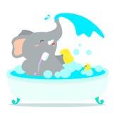 Den lyckliga elefanttecknade filmen tar ett bad badar in Royaltyfria Bilder