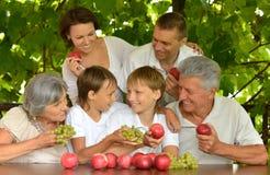 Den lyckliga familjen i sommar parkerar Royaltyfri Fotografi