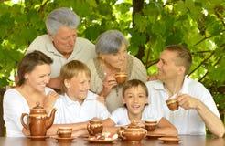 Den lyckliga familjen i sommar parkerar Arkivbilder