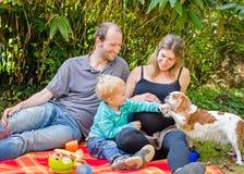 Den lyckliga familjen med deras gravida moder som har picknicken parkerar in Royaltyfri Fotografi