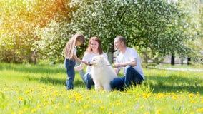 Den lyckliga familjen med en vit hund i en sommar parkerar royaltyfri bild