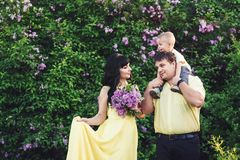 Den lyckliga familjen parkerar in med den blommande lilan Den lyckliga mamman, farsan och sonen går på solnedgången Begrepp av de Royaltyfri Foto