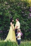 Den lyckliga familjen parkerar in med den blommande lilan Den lyckliga mamman, farsan och sonen går på solnedgången Begrepp av de Royaltyfria Bilder
