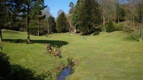 Den lyckliga familjpicknicken i naturen parkerar arkivfoton
