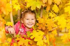 Den lyckliga flickan döljer i höstlönnlöv under dag Royaltyfri Foto