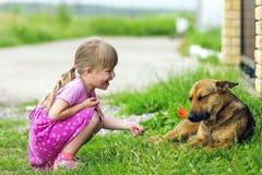 Den lyckliga flickan visar den röda blomman till en hund arkivfoto