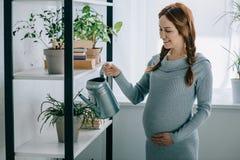 den lyckliga gravida kvinnan som bevattnar växter med att bevattna kan royaltyfri foto