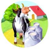 den lyckliga kon mjölkar Fotografering för Bildbyråer