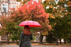 Den lyckliga kvinnan som går i höststad, parkerar Regnigt väder och gula träd omkring Royaltyfri Foto