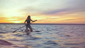 Den lyckliga kvinnan svävar på en surfingbräda Den yrkesmässiga surfaren rider ett bräde i aftonen lager videofilmer