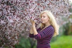 Den lyckliga le Caucasian blonda kvinnan med långa hårleenden och det lyckliga near blomstra körsbärsröda trädet för plommon, tyc Royaltyfri Fotografi