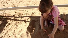 Den lyckliga lilla flickan i rosa färger spelar med sand på lekplats på sommar stock video