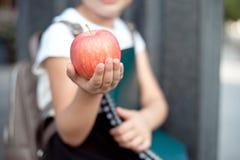 Den lyckliga lilla skolflickan med blont h?r i skolalikformig med lunch, bok sitter n?ra skola arkivbild