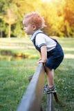 Den lyckliga lilla ungen som har gyckel som klättrar på staketet parkerar in, på varm sommardag arkivfoto