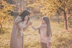 Den lyckliga mumen och dottern play höstparken Royaltyfria Foton