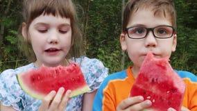 Den lyckliga pojken och flickan äter vattenmelon i grön sommar parkerar arkivfilmer