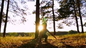 Den lyckliga pysen stojar i parkerar eller skogen på solnedgången Barnlekarna med sidorna som kastar upp dem silhouette stock video