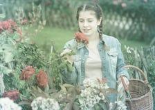 Den lyckliga unga flickan som poserar nära rosor, och lukter blommar utomhus- Royaltyfri Foto