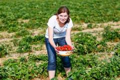 Den lyckliga unga kvinnan väljer på jordgubbar för en bärlantgårdplockning Arkivfoton