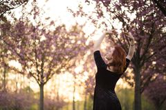 Den lyckliga unga loppdansarekvinnan som tycker om fri tid i en sakura k?rsb?rblomning, parkerar - den Caucasian vita r?dh?rig ma royaltyfri fotografi
