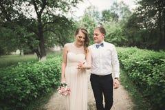 Den lyx att gifta sig den brölloppar, bruden och brudgummen som in poserar, parkerar Fotografering för Bildbyråer