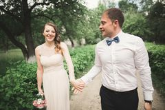 Den lyx att gifta sig den brölloppar, bruden och brudgummen som in poserar, parkerar royaltyfria bilder