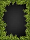 Den lyxiga inbjudanaffischramen av sörjer, gran, prydliga filialer för ett julparti på en svart bakgrund Mall för stock illustrationer