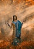 Den lyxiga indiska kvinnan mediterar stående det fria i solljuset stock illustrationer