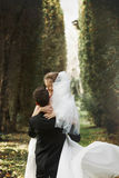 Den lyxiga stilfulla unga bruden och brudgummen på bakgrunden fjädrar s arkivfoton