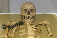 Den mänskliga begravningen återstår med den mänskliga skallen och benet Royaltyfri Bild
